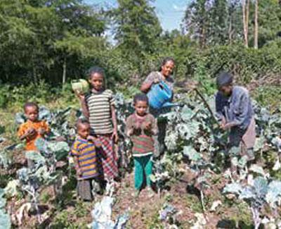 08_Ethiopia_img_02