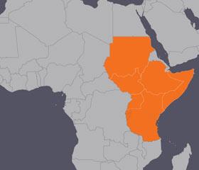 동아프리카 피해 지역