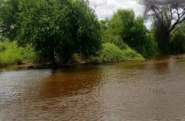 케냐 홍수로 범람한 강의 모습