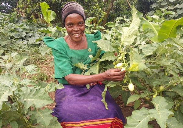 우간다 카총가 자립마을 소득증대(식량)자립