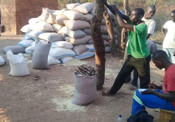 잠비아 카인두 자립마을 소득 및 경제 자립