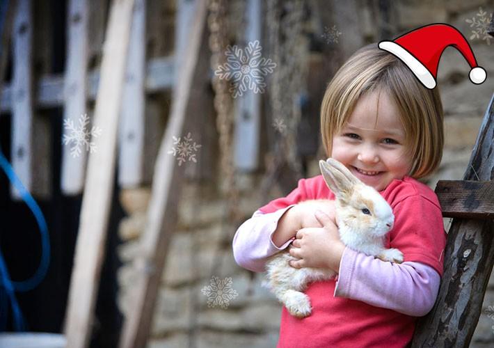 토끼를 안고 즐거워 하는 소녀